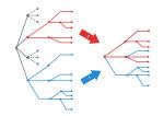 GitRepoStructure